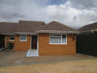 2 bed Semi-Detached Bungalow to rent in CROMWELL ROAD, Weymouth...