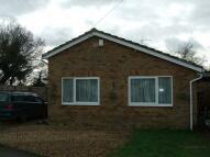 Bungalow to rent in Mill Close, Ellingham...