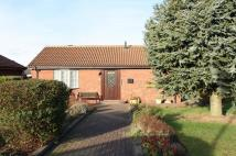 Detached Bungalow in Watling Close, The Glebe...