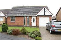 Detached Bungalow for sale in Hensley Court, Norton...