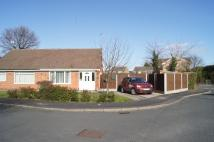 Semi-Detached Bungalow for sale in Larchdale Close...