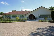 Lands End Detached Bungalow for sale