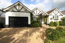 Detached Bungalow for sale in Oakridge Avenue, Radlett...