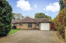 Detached Bungalow for sale in Old Lodge Way...