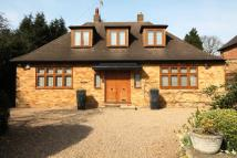 3 bedroom Detached Bungalow for sale in Windmill Lane...