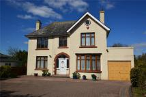 4 bedroom Detached property in Tavistock Road...