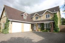 Detached house for sale in Pond Lane, Purton Stoke...