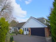 Detached property for sale in Honeyhill...