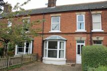 Character Property in Holt,