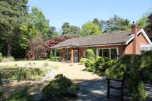 3 bed Detached Bungalow for sale in High Kelling,