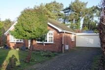 Detached Bungalow for sale in Heathfield Road...