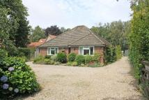 Detached Bungalow for sale in Pineheath Road...