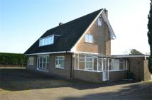 Detached house in Stanford Road, SHEFFORD...