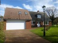 Detached home to rent in Hanscombe End Road...