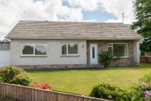 Detached Bungalow in 7 Allerton Place...
