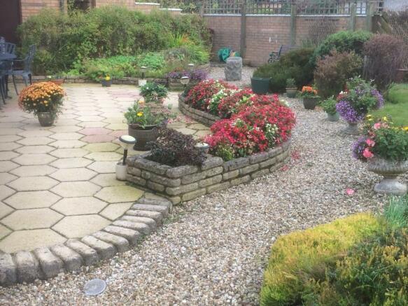 Garden Summer 2017