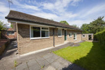 3 bed Detached Bungalow in Eilansgate Bank, Hexham