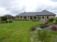 4 bed Detached Bungalow in Whittonstall