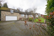 3 bed Detached Bungalow for sale in The Link, Hexham