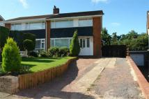 semi detached property to rent in Hatherleigh Road, Rumney...