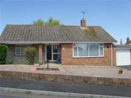 Bungalow to rent in . West View Close ....