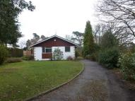 Detached Bungalow in Ford Lane, Wrecclesham...