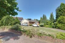 Detached Bungalow for sale in London, N21
