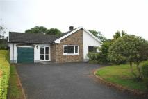 Detached Bungalow in Narberth