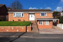 Detached Bungalow for sale in Littleworth Road...