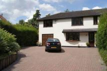 semi detached property in Hollow Road...