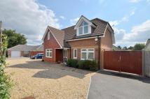 3 bed Detached property in West Moors