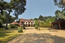 4 bed Detached house for sale in Golf Links Road, Ferndown
