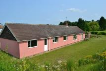 Detached Bungalow in West Bungalow, Pentlow