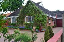Detached Bungalow for sale in Mill Road, Kedington