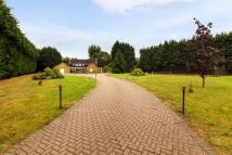 6 bed Detached house in Harlow Common