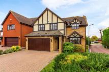 5 bedroom Detached property for sale in THE MOUNT
