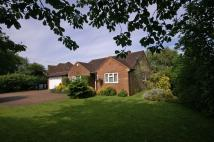 4 bedroom Detached Bungalow in Green Lane, Prestwood...