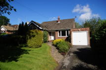 3 bed Detached Bungalow in New Road...