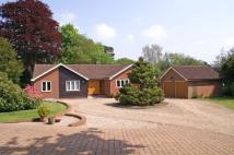 Detached Bungalow in The Lee, Great Missenden