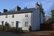 4 bedroom Cottage in MELDRETH