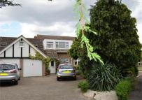 semi detached home in ROYSTON