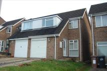 3 bedroom semi detached home to rent in ROYSTON