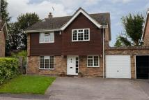 Detached house to rent in MELBOURN