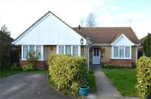 2 bedroom Detached Bungalow to rent in MELBOURN