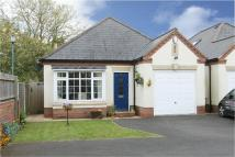 2 bed Detached Bungalow in 16b, Belbroughton Road...