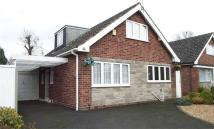 3 bedroom Detached Bungalow in 79, Osmaston Road...