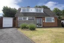Detached Bungalow to rent in 8, Beacon Rise...