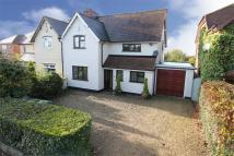 semi detached house for sale in 53, Belbroughton Road...