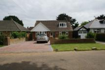 2 bed Detached Bungalow to rent in Manor Avenue, Deal, CT14