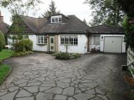 Detached Bungalow for sale in Brook Lane, Endon...
